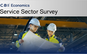 Service Sector Survey (4 issues)