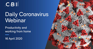 Daily Coronavirus Webinar: productivity and working from home