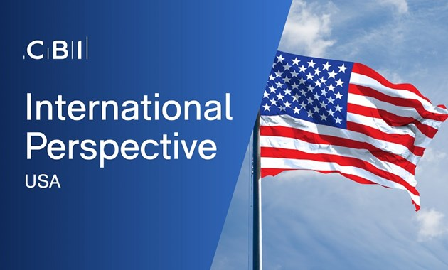International Perspective - USA