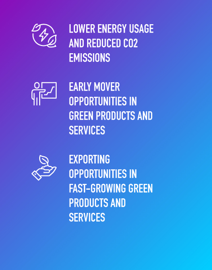 Seize The Moment Decarbonisation Infographic