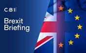 Sponsor a Brexit Briefing